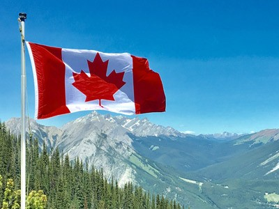 forestry Canada and canadian flag